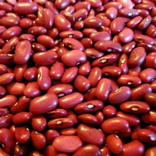 Red Beans / Frijoles Rojos